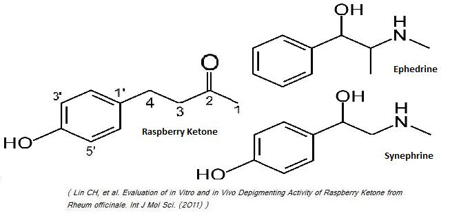 Raspberry Ketone Supplement - Science-based Review on