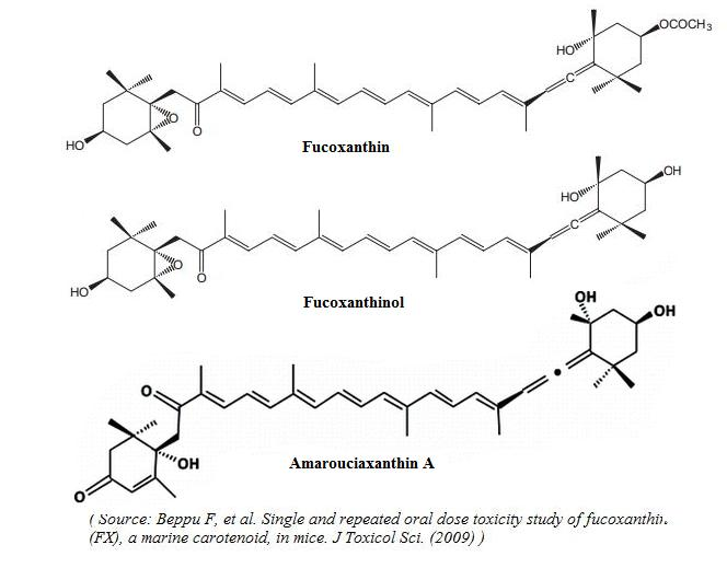 Fucoxanthin Scientific Review On Usage Dosage Side